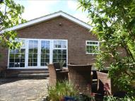 Detached Bungalow for sale in Chestnut Avenue, WARE