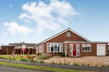 3 bed Detached Bungalow in Nelson Court, Watton...