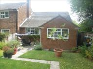2 bed Terraced Bungalow for sale in Lodgefield...