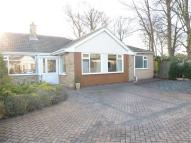 3 bed Semi-Detached Bungalow in Redcliff Drive...