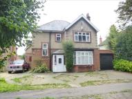 5 bed Detached property in Westmead Avenue, Wisbech
