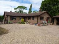 3 bed Detached Bungalow in Woodhouse Lane...