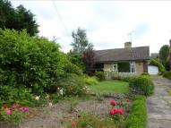 Shireoaks Common Detached Bungalow for sale