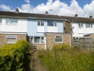semi detached home for sale in Beech Close, Wymondham