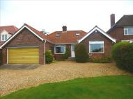Detached Bungalow for sale in Chapel Lane, Wymondham