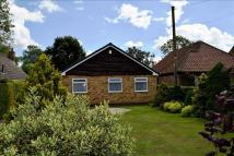 Detached Bungalow in Drome Road, Copmanthorpe...