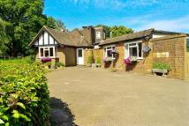 Bungalow in Russ Hill, Charlwood...