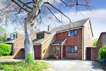 4 bed Detached property in Sowell Street...