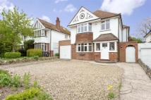 5 bed Detached house in Holly Lane, Margate, Kent
