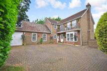 Detached house for sale in Blake Close, Walmer...