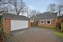 4 bedroom Detached property in Lavenda Close, Hempstead...