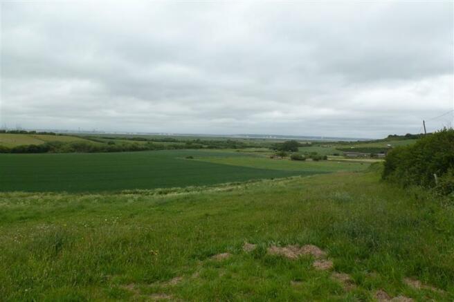 View (Original)