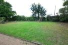 Front Garden (Original)