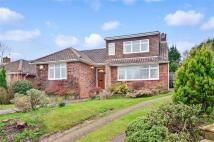 2 bed Bungalow for sale in Mill Hill Close...