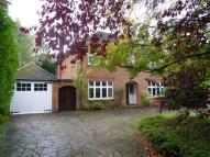 Detached house to rent in Pirbright Road...