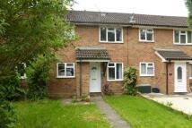 Ashridge Terraced property to rent