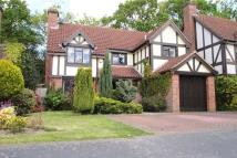 4 bedroom Detached property in Tenby Road, Frimley, GU16