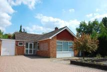 Bungalow for sale in Sandown Drive, Frimley...
