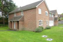 Flat to rent in Albert Road, Bagshot...