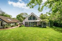 Detached house for sale in Hempstead Road...