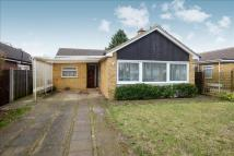 3 bed Detached Bungalow for sale in Badminton Road...
