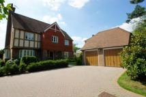 Detached home for sale in Farthings Hill, Horsham...