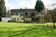 Detached home for sale in Thornden, Cowfold...