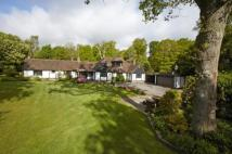 Bungalow for sale in Old Domewood, Copthorne...