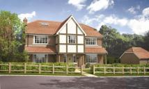 new property in Thakeham Copse...