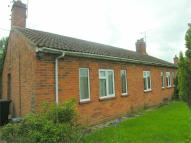 Semi-Detached Bungalow for sale in Mortimer, Reading...