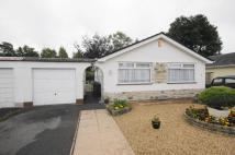 Detached Bungalow for sale in West Moors, Ferndown BH22