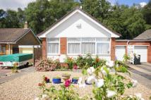 Bungalow in West Moors, BH22