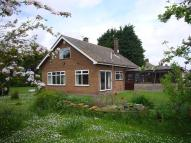 Moorland Road Detached Bungalow to rent