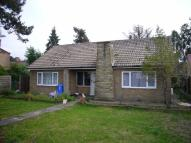 Detached Bungalow for sale in Centenary Road, Goole...