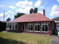 Detached Bungalow in Coates Garth, Selby Road...