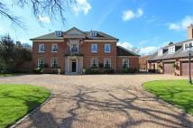 8 bed Detached home to rent in Kingswood