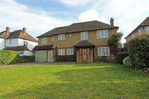 4 bed Detached home in Cheam