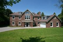 6 bed new house to rent in Kingswood
