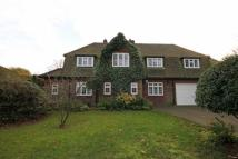4 bed Detached property in Banstead
