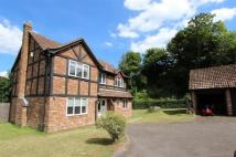 4 bed Detached house in Chipstead