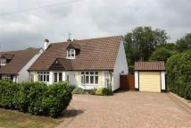 4 bedroom Detached Bungalow in Banstead