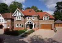new home in Chipstead