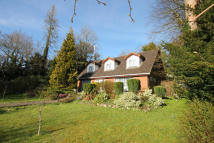 Chalet to rent in Outwood Lane, Chipstead