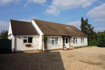 4 bed Detached Bungalow for sale in Main Road, Tallington...