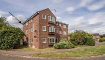property to rent in Harbord Close, North Walsham