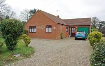 3 bed Detached Bungalow in Avenue Road...