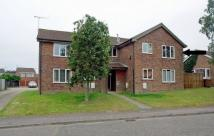 Flat to rent in 31 Hadfield Road...