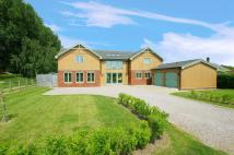 Detached home for sale in Gosberton Risegate