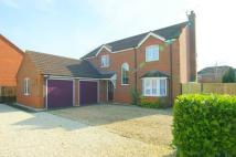 4 bed Detached house in Teal Grove, Cowbit