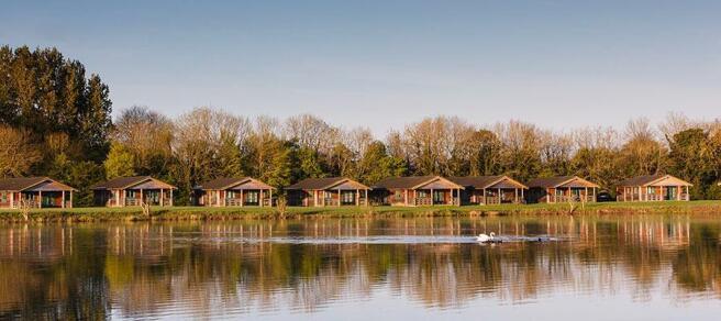 lake-pochard-holiday